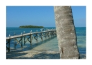 bahamas - wooden bridge