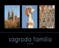 spain - barcelona - sagrada familia