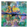 I do not give up