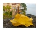 italy - lake garda - pieve